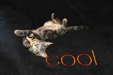 Coole Bilder   New Calendar Template Site