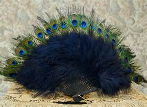 peacock feather fan peacock feathers seasweetie s pages