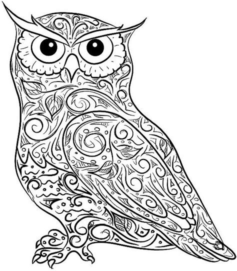 hard coloring pages of owls barn owl coloring pages for adults