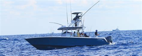 contender boats vector contender offshore fishing boats always in the game