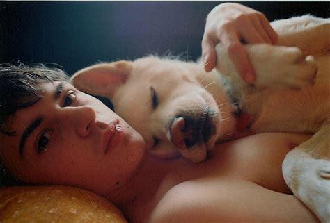 puppy boy bolt boy sleep image 46110 on favim