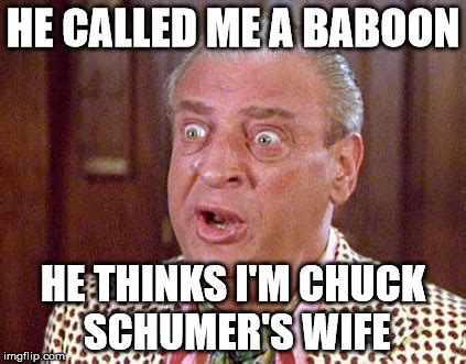 image tagged in chuck schumer imgflip