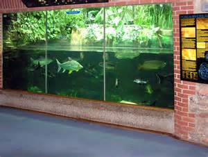 Aquarium Zoo Fish Aquarium Zoo Exploring Omaha Aquarium Henry