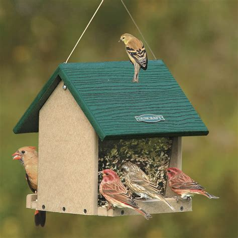 duncraft com duncraft 4084 eco friendly hopper bird feeder