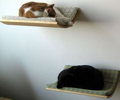 cool cat beds 15 creative cat houses and cool cat bed designs