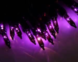 purple mini lights mini string lights purple 13 5ft 50ct in black cord