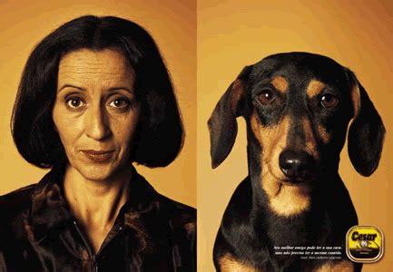 Comparaison Calendrier Photo Comparaison Dessin Humoristique Animaux Humour Et Blague