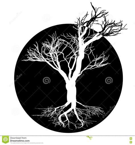 imagenes blanco y negro serigrafia dibujo blanco y negro del 225 rbol de hoja caduca silueta