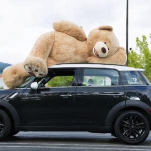 Boneka Big Brown Teddy boneka teddy murah harga berpatutan kualiti yang