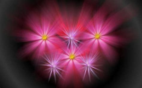 lights flower grafik arka plan resimler png arka plan resimler temal箟k