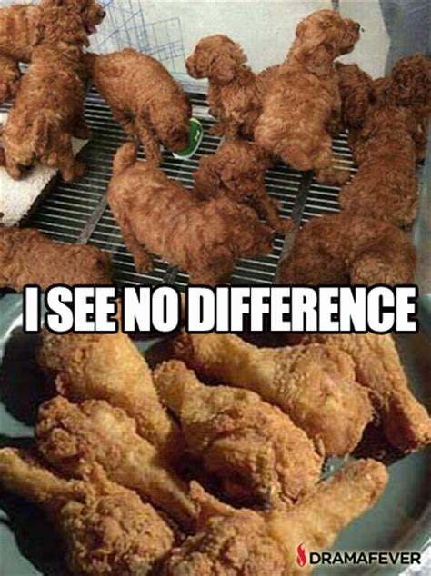 puppies that look like fried chicken puppies that look like fried chicken memes