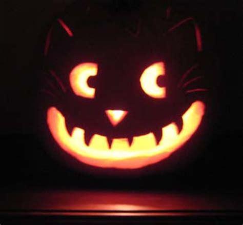cat pumpkin sweetology a witches tea enter if you