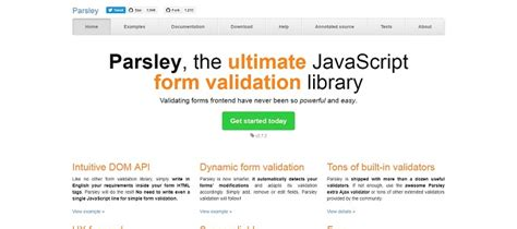 parsley pattern validation 20 best javascript libraries for your next projects gojquery