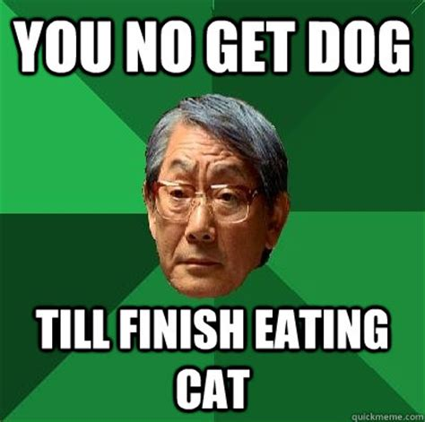 Meme Eating - you no get dog till finish eating cat high expectations