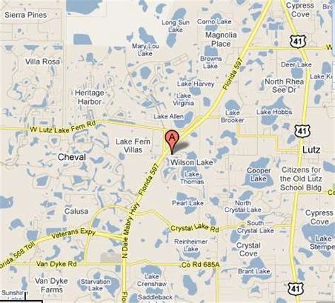 map of ta florida map of lutz florida 28 images 33549 zip code lutz florida profile homes apartments lutz