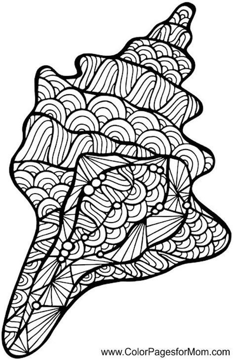 intricate turtle coloring page best 25 beach coloring pages ideas on pinterest dover