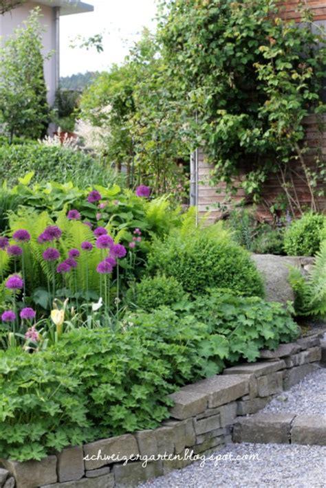 Ein Schweizer Garten by Ein Schweizer Garten Purpur Wunderkugeln Der Zierlauch