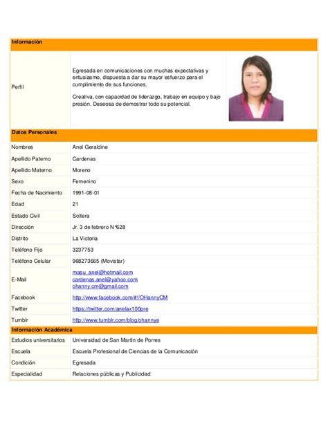 Modelo De Curriculum Vitae No Documentado Doc Cv