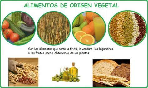 imagenes de origen animal vegetal y mineral alimentos de origen vegetal eduvirama