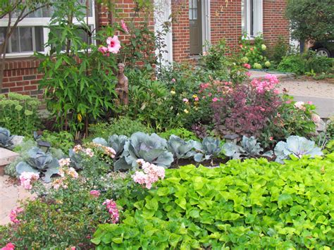 Curb Appeal Ideas Pictures - maria s lawn be gone front yard in ontario fine gardening