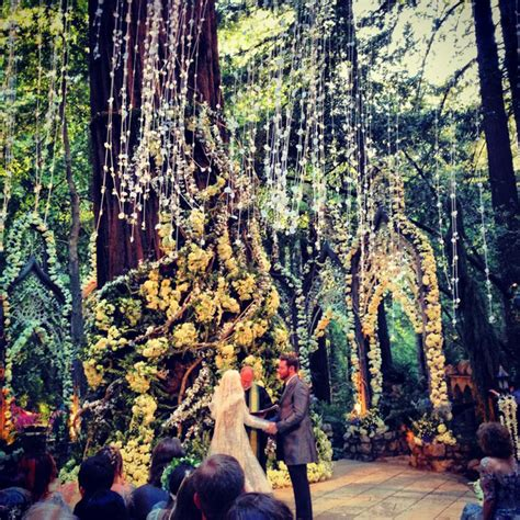 wedding venues in redwoods 2 startupbook 187 curated news and advice for entrepreneurs 187 wanted forest to speak