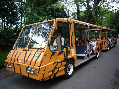 Singapore Zoo With Tram Ride Child 301 moved permanently