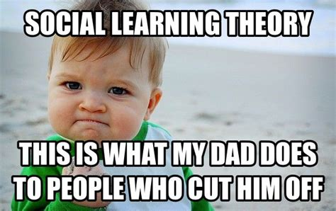 Theory Of Memes - 1000 images about social learning theories on pinterest