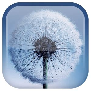 wallpaper live galaxy s3 dandelion live wallpaper android apps on google play