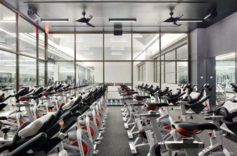 gym pictures beyond the gym verbal visual