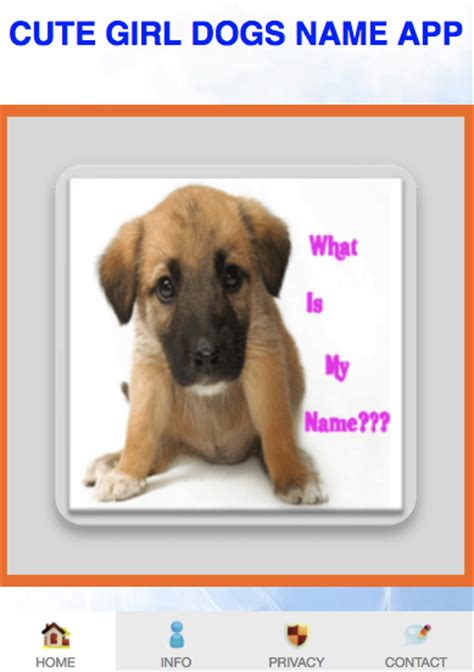 puppy names 2017 names app 2017 android apps on play