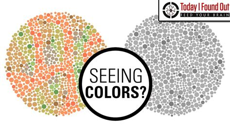can see color can color blind see more colors when they take