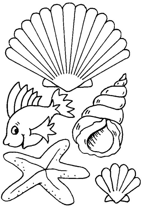 shells coloring pages