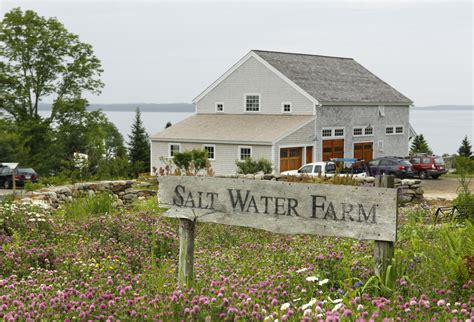 salt water farm seeks expression of farm to table