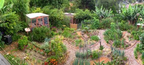 food forest  ultimate garden dixibooks