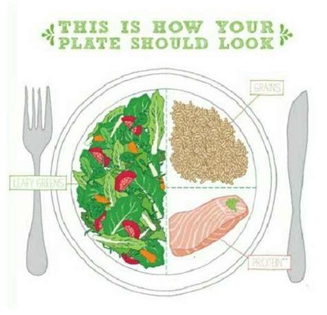 healthy plate diagram portion health