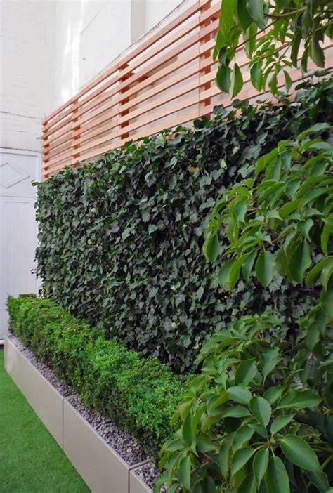 jardines setos imágenes 50 im 225 genes de los jardines verticales m 225 s impactantes