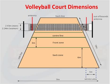 backyard volleyball court dimensions ebaco sports flooring presentation