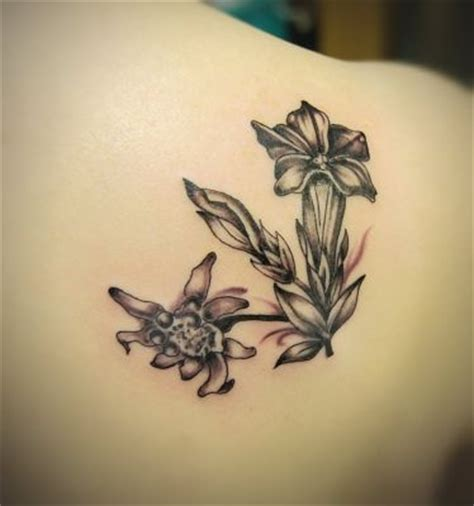 international tattoo designs alpine gentian and edelweiss for international flowers