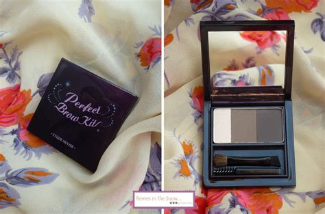 Etude Brow review etude house brow kit berries in the snow