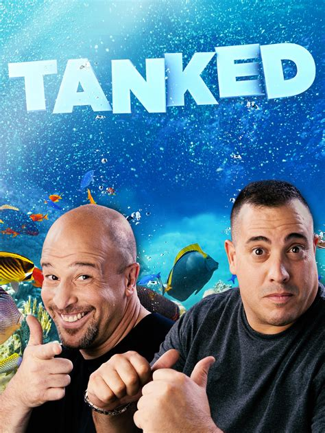 tanked tv show news  full episodes   tv