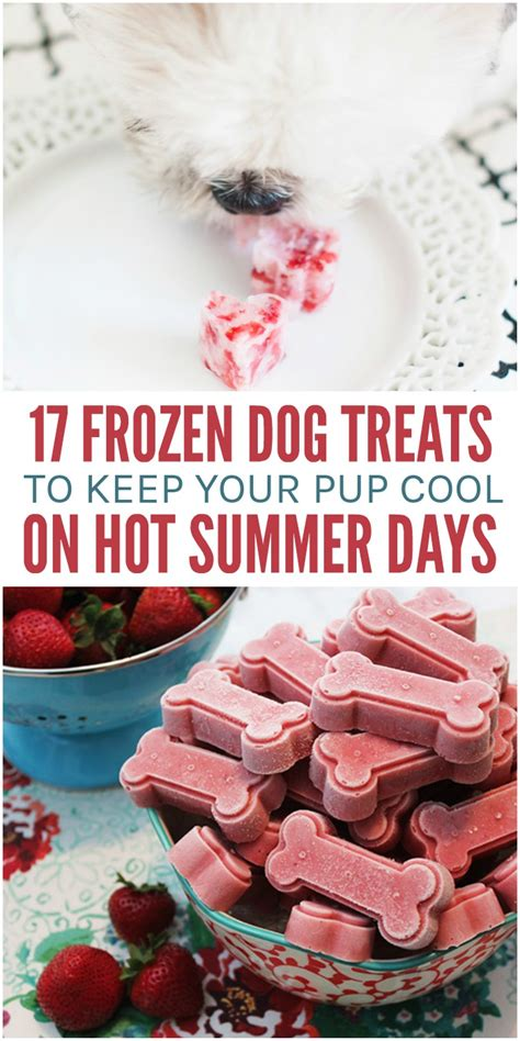 Keep Your Treats Cool Like 17 frozen treats to keep your pup cool this summer