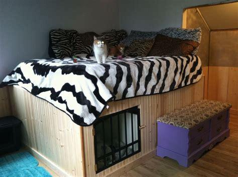 husband   built  bed wbuilt  dog kennel