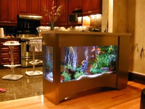 17 best ideas about glass fish tanks on fish