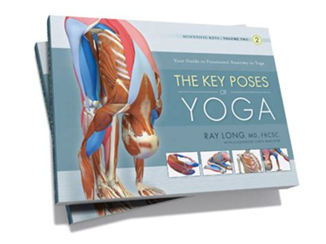 libro key poses of yoga the daily bandha welcome to thefascianator com