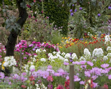 Beautiful Flower Garden Wallpaper Beautiful Flower Garden Background Wallpaper