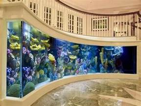 Fish Decorations For Home by Fish Tank Decoration At Home 12 Cool Fish Tanks Designs