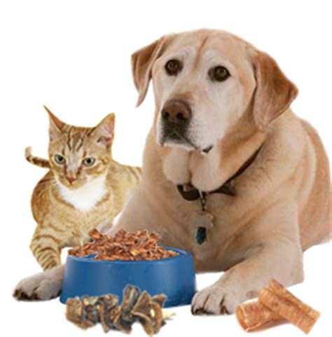 only pet food pet food friends of petcare