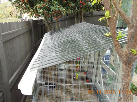 recycled fence coop backyard chickens community