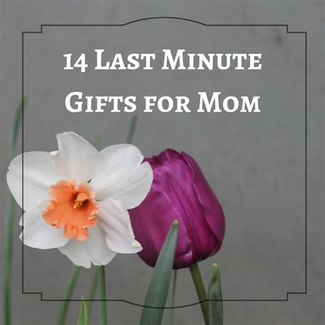 14 last minute ideas for s day gifts my cup of cocoa