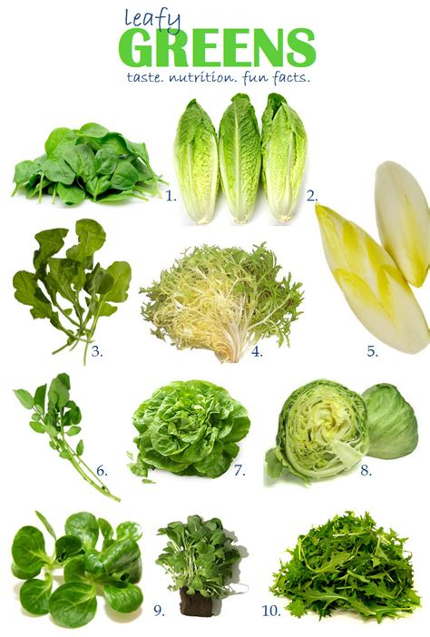vegetables questions vegetables quiz free general knowledge quiz for